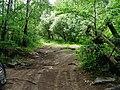 G. Miass, Chelyabinskaya oblast', Russia - panoramio (124).jpg