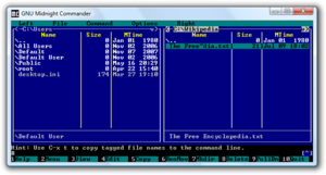 Win32 console - GNU Midnight Commander using box drawing characters in the Win32 console.