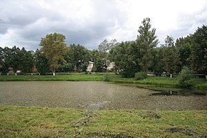 Gavrilov-Yamsky District - A pond in the center of the town of Gavrilov-Yam, the administrative center of the district