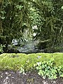 Geilles (Oyonnax) dans l'Ain en France - 12.JPG