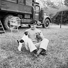 Le général Montgomery, le 6 juillet 1944 avec ses jeunes chiens