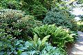 General view - VanDusen Botanical Garden - Vancouver, BC - DSC06806.jpg
