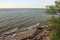 Gfp-pennsylvania-eerie-bluffs-state-park-lake-erie-shore.jpg