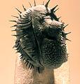Gfp-trilobite-drotops-armatus.jpg