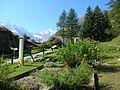Giardino Botanico Alpino Paradisia abc3.JPG