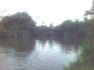 Gin Ganga river in Sri Lanka