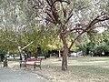 Gjorche Petrov, Skopje, Macedonia (FYROM) - panoramio (23).jpg