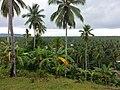 Glan - panoramio.jpg