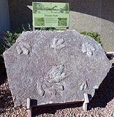 Glen Canyon National Recreation Area, U.S (5).jpg