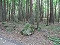 Gmina Piecki, Poland - panoramio (18).jpg