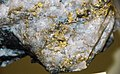 Gold in quartz (Homestake Mine, Lead, Black Hills, South Dakota, USA) 4 (17161573332).jpg