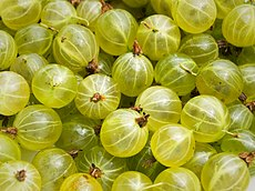 Gooseberries.jpg