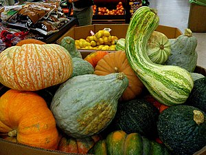Gourds at sale