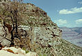 Grand Canyon Moran Point03.jpg