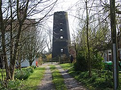 Great Ellingham Mill.jpg