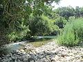 Guadiaro River 01.JPG