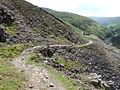 Gunnerside Gill - geograph.org.uk - 518447.jpg