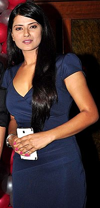 Gurmeet Choudhary Kratika Sengar Punar Vivah Success Party crop2.jpg