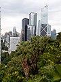 HK ML 半山區 Mid-levels 波老道 Borrett Road February 2020 SS2 15.jpg