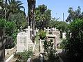 Haifa0036.jpg