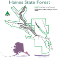 Haines State Forest.png