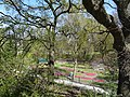 Hamm, Germany - panoramio (5508).jpg