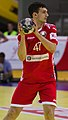 Handball-WM-Qualifikation AUT-BLR 083.jpg