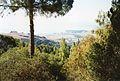 Hearst Castle, San Simeon - panoramio (4).jpg