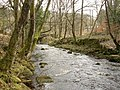 Hebden Water, Midgehole - geograph.org.uk - 142543.jpg