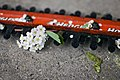 Hedge trimmer with white flowers.jpg