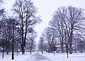 Helsingborg 2010-11-27 (5393094343).jpg