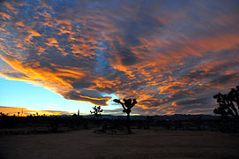 High Desert Twilight at Eastland Ranch.JPG
