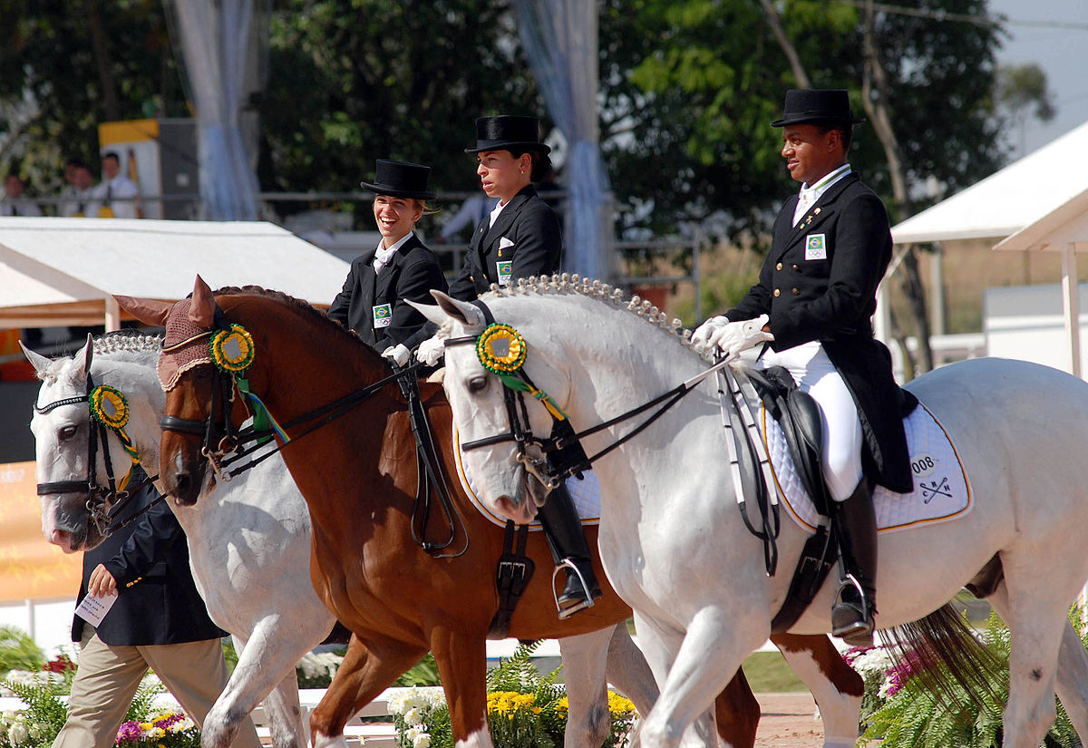 Equestrian At The 2007 Pan American Games Wikipedia