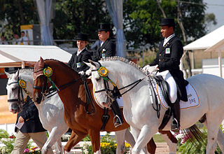 Equestrian at the 2007 Pan American Games