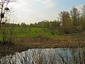 Hlyboke lake Muromets2.JPG