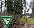Hofgeismar-Gesundbrunnen - Schlosspark - Flächenhaftes Naturdenkmal-1097.jpg