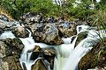 Hoganikal falls-2.jpg