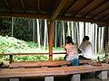 Hokokuji5.JPG