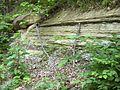 Holtzclaw siltstone-Kentucky.jpg