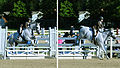 Horse Jumping (4968682322).jpg