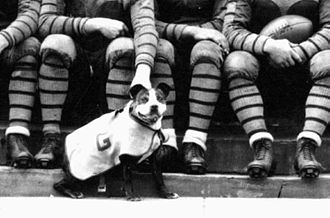 "Jack the Bulldog - ""Hoya"" began as mascot in 1926"