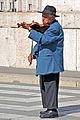 Hungary-0148 - I see you..... (7296385042).jpg