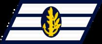 IDF Navy Ranks Samar 2.png