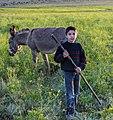 IMG 4325 Lar Plain, Iran (33292249654).jpg