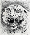 Illustration-3 (Clemson College Annual 1907).png