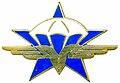 Il y  a  65  as le  7  mai  chue  de  Dien  Bien  Phu 120px-Insigne_du_1%C2%B0RCP