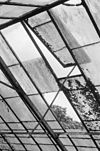 interieur kas, uitzetraam - den dungen - 20334465 - rce