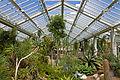 Interior of Princess of Wales Conservatory, Kew Gardens.jpg