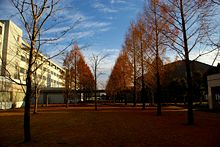 International University of Health and Welfare Japan 01.jpg