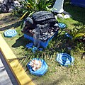 Isla Mujeres, Instituto nacional de pesca - panoramio (1).jpg
